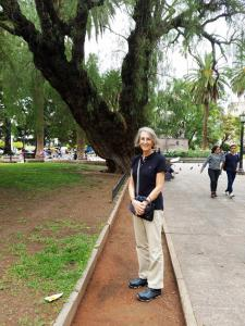 Parque San Martin, Salta
