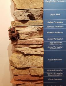 Memorizing the rock layers!