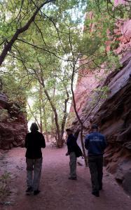 Long Canyon slot canyon