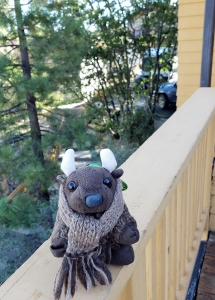 At our AirBnB in Big Bear