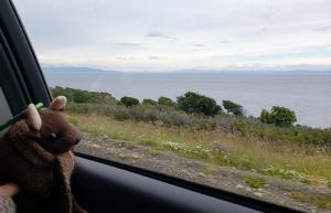 On the road, Tierra del Fuego