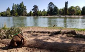 General San Martin Park, Mendoza, Argentina