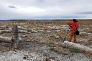 At Parque de los Estromatolitos,Tierra del Fuego