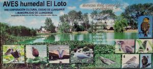 Birds of the wetlands sign