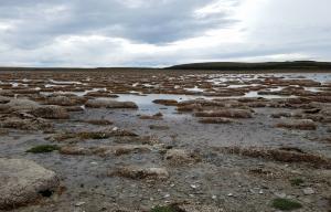 Parque de los Estromatolitos, Tierra del Fuego