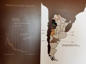Wine regions map at Zolo / Tapiz winery, Mendoza