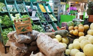 Public market, Mendoza