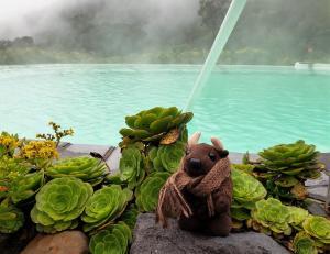 Relaxing (hot) pool side at Las Termales del Ruiz
