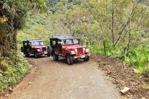 Our jeeps