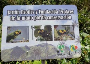 Reserva Natural Loro Orejiamarillo