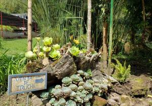 La Trucheria, Jardín