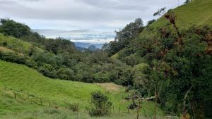 Hacienda el Bosque