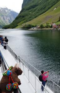 Fjord cruise! From Fl�m  to Gudvangen
