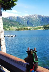 View from hotel, Ulvik, Norway