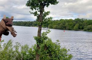 Bonny bonny banks of Loch Lomond