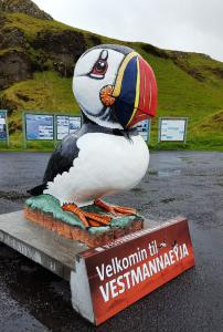 Proud of their puffins