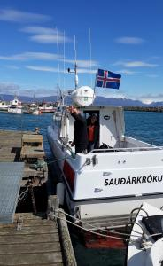 Sauðárkrókur, back at the dock