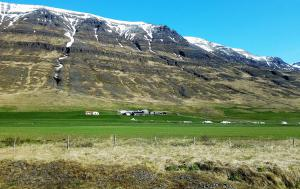 Roadside scenery back to Akureyri