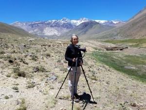 Chile 2017-Birding Central