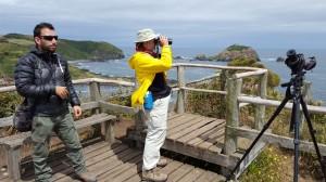 Chile 2017-Birding South