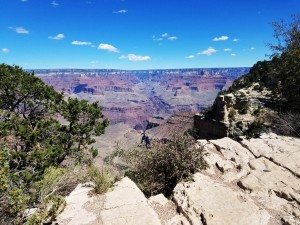 Grand Canyon Natl Park