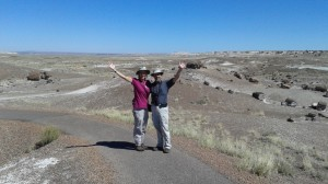 Petrified Forest Natl Park