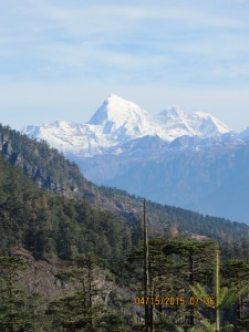 High Himalayas in the distance
