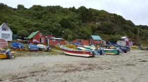 Islotes de Puñihuil Natural Monument