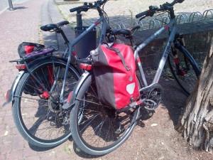 Rental bikes!