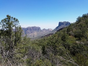 View from the Laguna Meadows trail, Big Bend NP