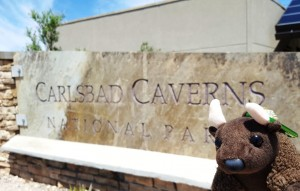 Carlsbad Caverns Natl Park, NM