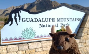 Guadalupe Mtns Natl Park, TX