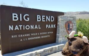 Big Bend Natl Park, TX
