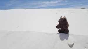 Surfing the dunes at White Sands Natl Monument, NM