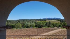 Oller del Mas Winery, Manresa