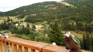 Cabin view, Jardine MT