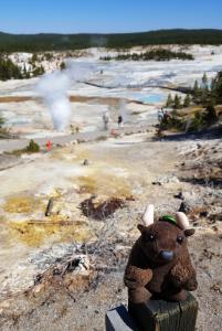 Norris Geyser Basin, Yellowstone NP