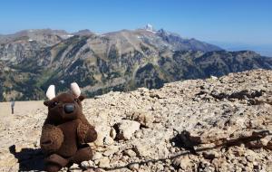 Jackson Hole WY, atop Rendezvous Mountain