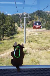 Taking the gondola down, Jackson Hole WY