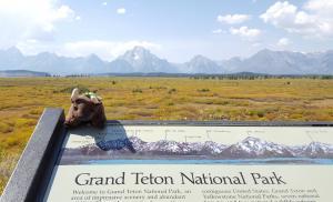 Jackson Lake Lodge, Grand Teton NP