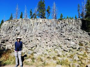 Sheepeater Cliff, Yellowstone NP