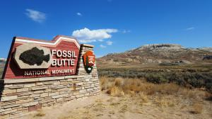 Fossil Butte NM, WY