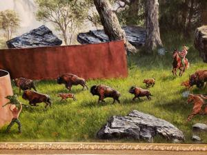 Bisons at the Princeton Art Museum