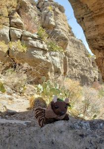 Permian Reef Trail, Guadalupe Mountains NP