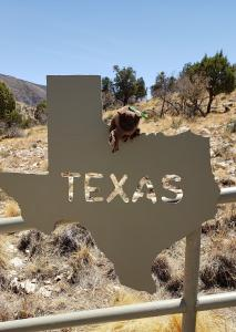 State line! in Dog Canyon, Guadalupe Mountains NP