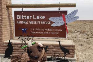 Bitter Lake NWR near Roswell, NM