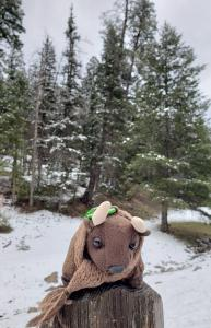 Near Cloudcroft NM - snow in April! Over 8600 ft elevation!