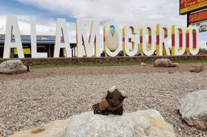 Alamogordo!