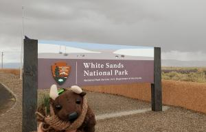 White Sands NP - last time I was here it was a national monument