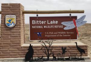 Bitter Lake NWR, Roswell NM
